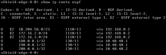 "NSX Perimeter Edge: ""show ip route ospf"" CLI command output"